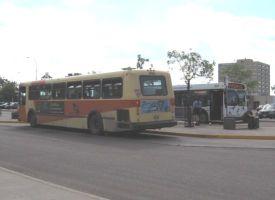bus2t