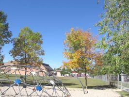 fall06092011t.jpg