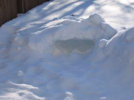 snowbackyard1t.jpg