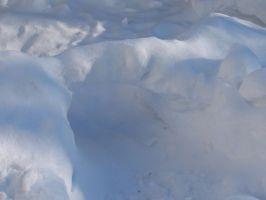 snowbackyard2t.jpg