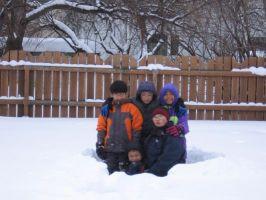 snowbackyard4t.jpg