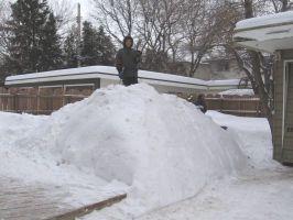 snowbackyard6t.jpg