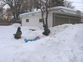 snowbackyard7t.jpg