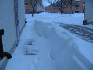 winterpeg2007